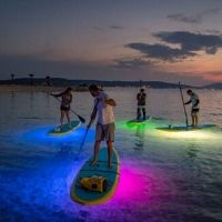 glow and full moon paddles
